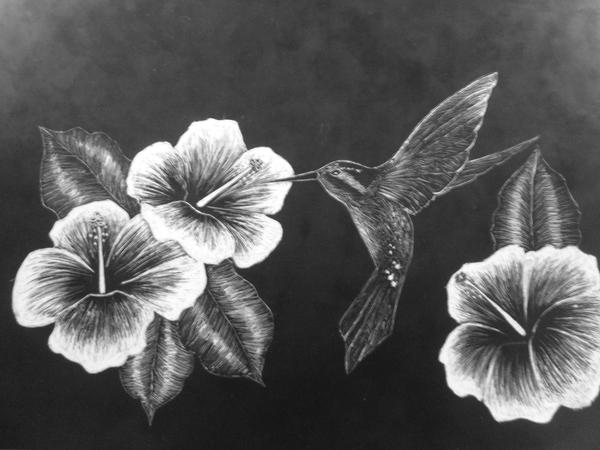 Hummingbird And Hibiscus By Gretchen Lynne