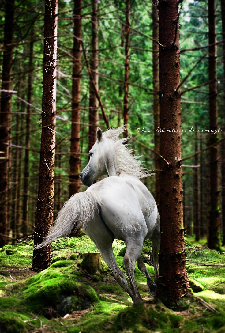 Mirkwood Forest by XxNCISCHICxX