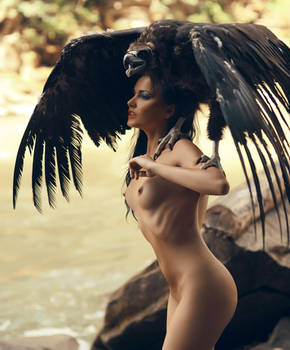 Vulture Mistress by Filip-Ok