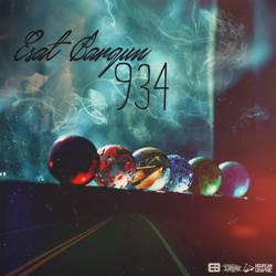 Esat Bargun - 934 (Cover)