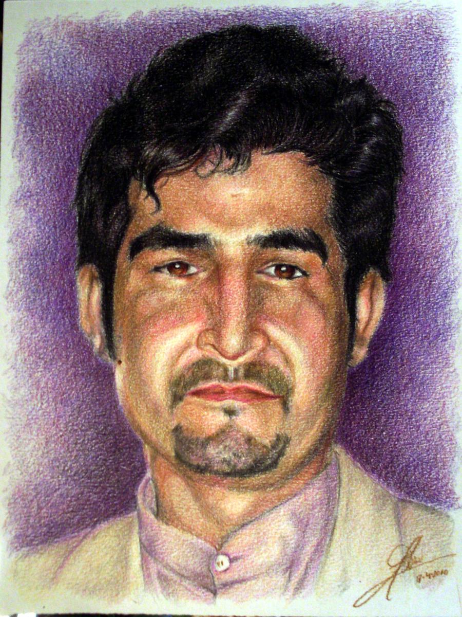perroandaluz's Profile Picture