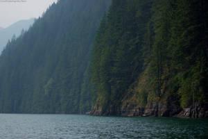Stave Lake II by Lumimyrskydawn