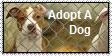 .::Adopt::. by WrathOfReeses