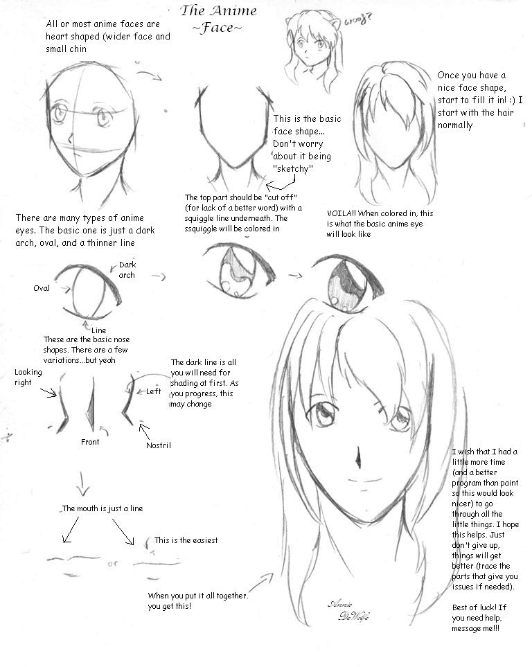Anime Face Tutorial By DWolfe06 On DeviantArt