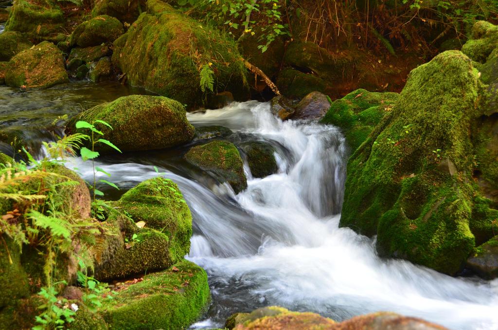 Whatcom Creek-28 September 2015 by SkyfireDragon