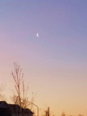 Bellingham Dawn-03Mar2018-S02 by SkyfireDragon