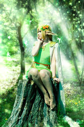 Deedlit Fairy Wood by crula
