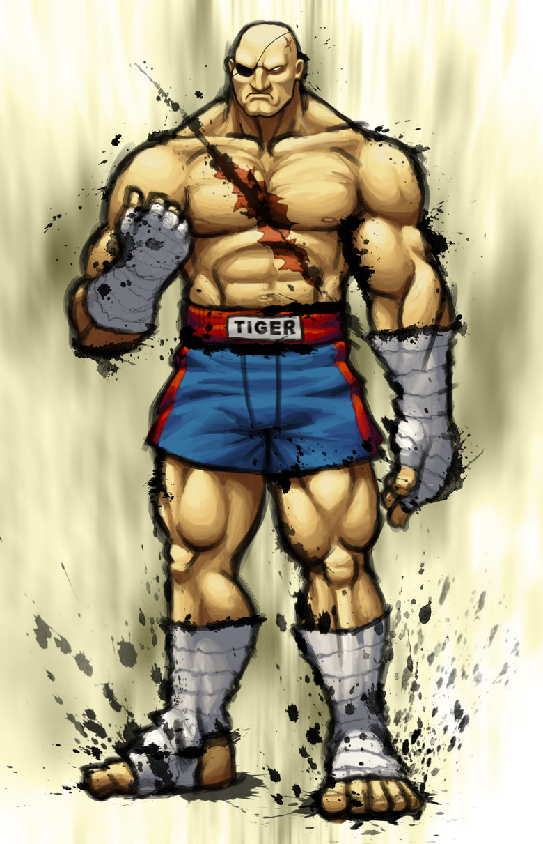 Street Fighter IV: SAGAT by Jiggeh