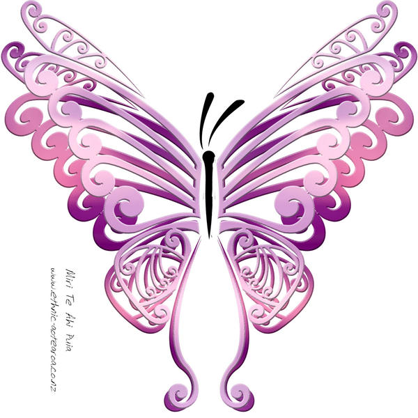 Purerehua - Buttefly by DragonAotearoa