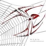 Tribal Spider by DragonAotearoa