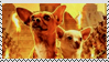 Beverly Hills Chihuahua stamp2 by Lora-Pedigree