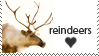 Reindeers lover by Lora-Pedigree
