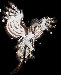 Harpy Wyvern by Nevan12