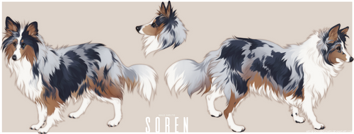 Soren by OctoberStars