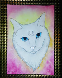 Luna kitty by CaptainBeth