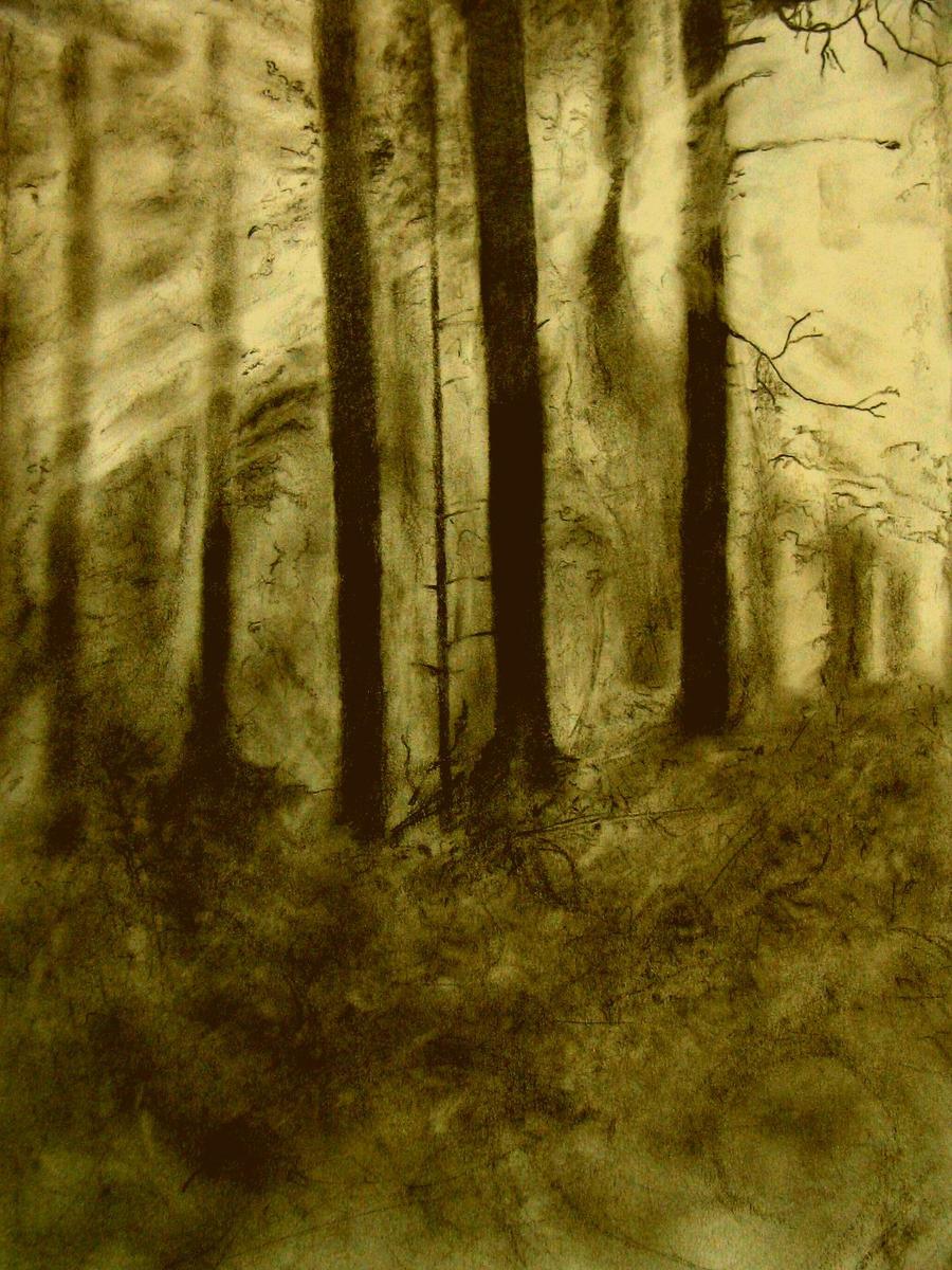 Glowing Woods by myusernameistaken2
