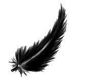 Feather by sashabrambleshadow
