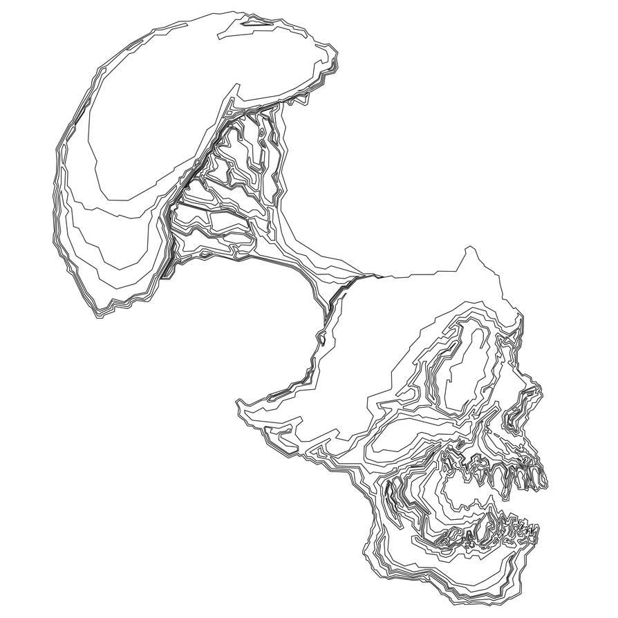 Skull-outline by igeking