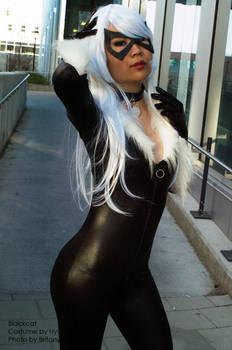 BlackCat 01