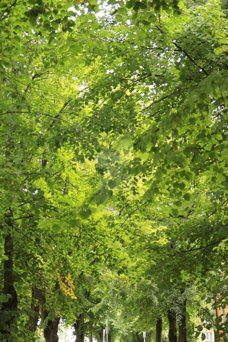 Green Mess by Panedhiel