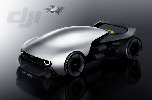 DJI Mavic Car [video]