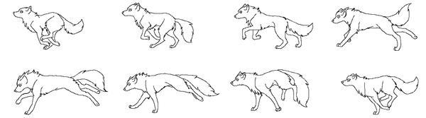 Line wolf run gif by raven-morticia