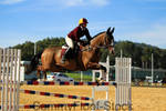 Show Jumping Stock-28