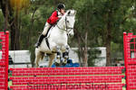 Show Jumping Stock-77