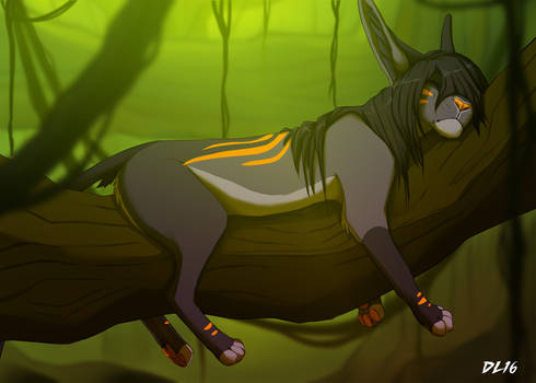 Napping in the Tasmin Forest