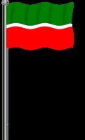 Flag of Tatarstan