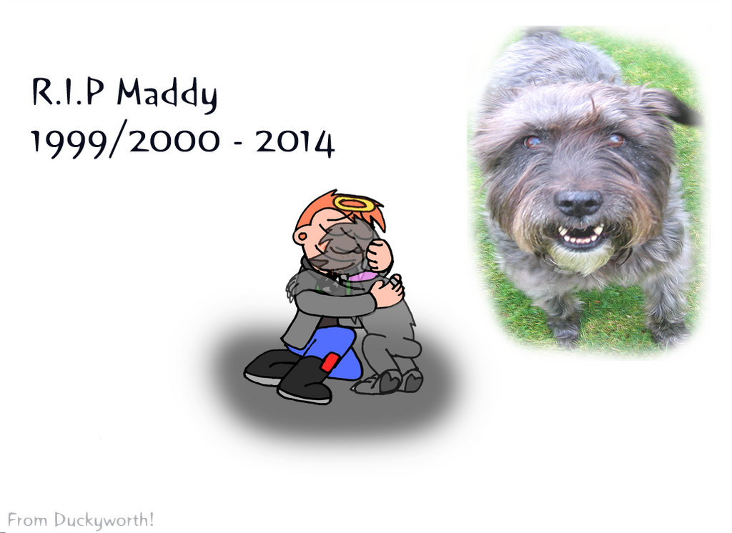 RIP Maddy by Duckyworth