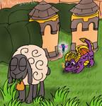 Sheep Hunting