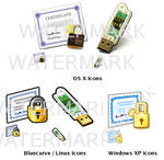 Miscellaneous Security Icons