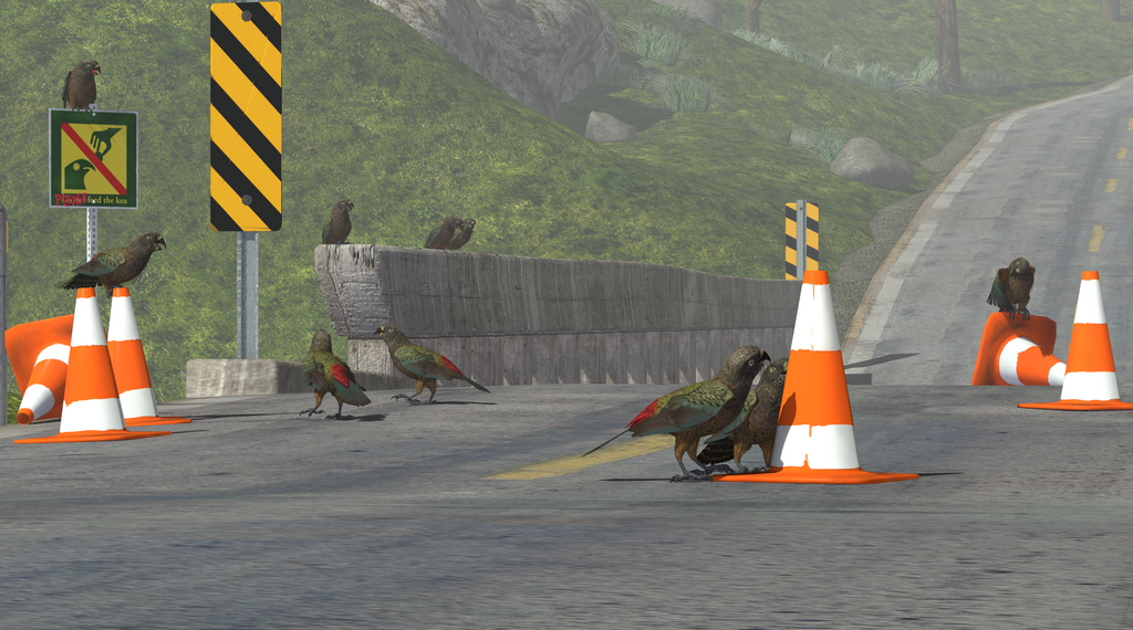 Kea Roadwork by KenGilliland