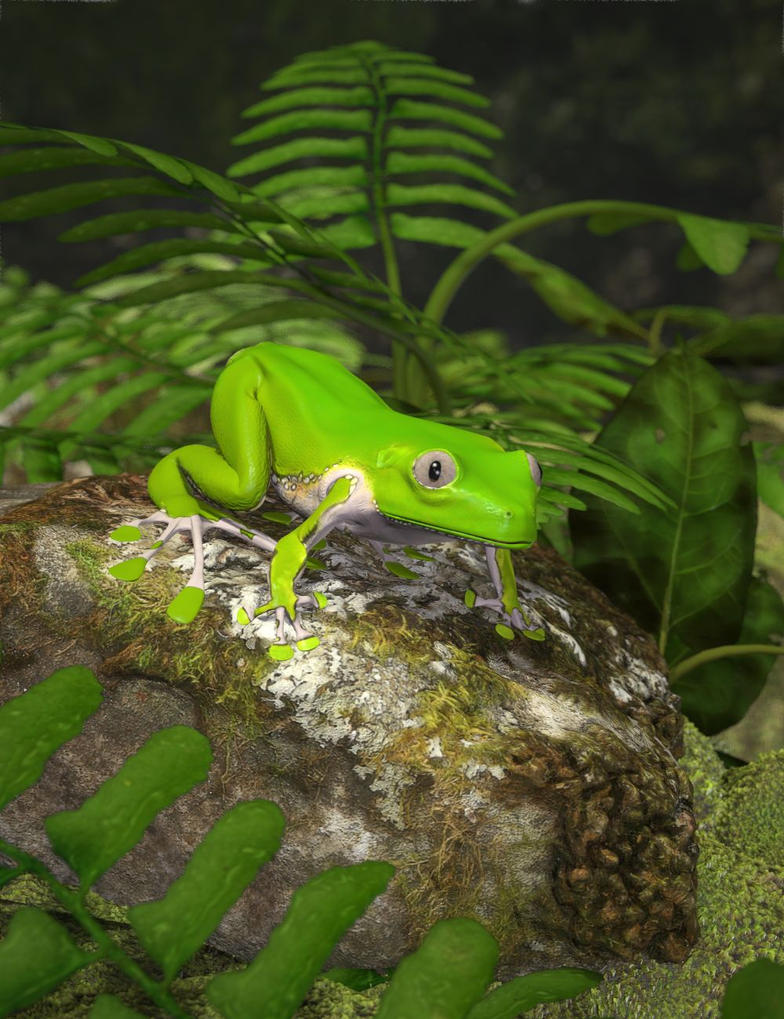 Giant Monkey Frog by KenGilliland
