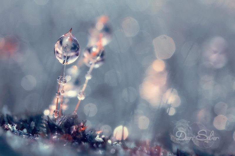 Ice blue by diensilver