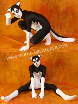 Black'n'white spandex husky 1