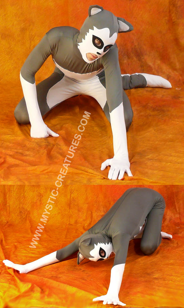 Grey spandex husky, 1-of-3 by Mystic-Creatures