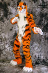 Lucky-Tiger Fursuit Photoshoot #12