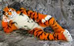 HD Wallpaper : Lucky-Tiger Fursuit Photoshoot #05