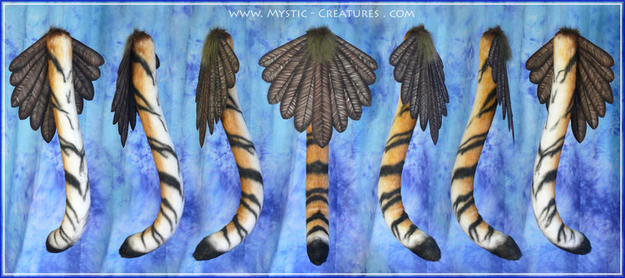 Gryphon tail - origin: siberian tiger golden eagle by Mystic-Creatures