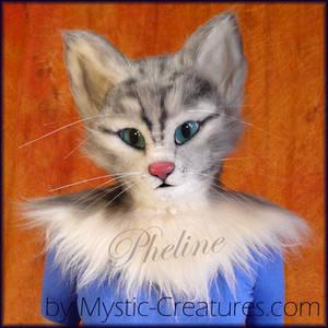 Pheline, the house cat