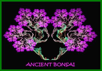 Ancient Bonsai by sparx222