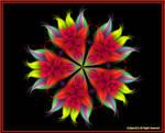 Apophysis Bouquet