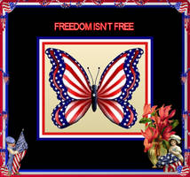 Freedom Isnt Free by sparx222