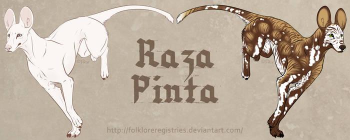 Raza Pinta Concept Designs