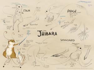 Jhibara Concept