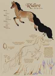 Fawnling OC: Ridire Concept Sheet