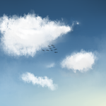 Clouds and Birds.. by Curulin