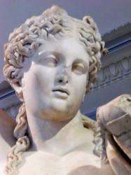 Apollon Portrait